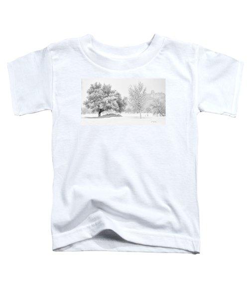 Winona Snowstorm Toddler T-Shirt
