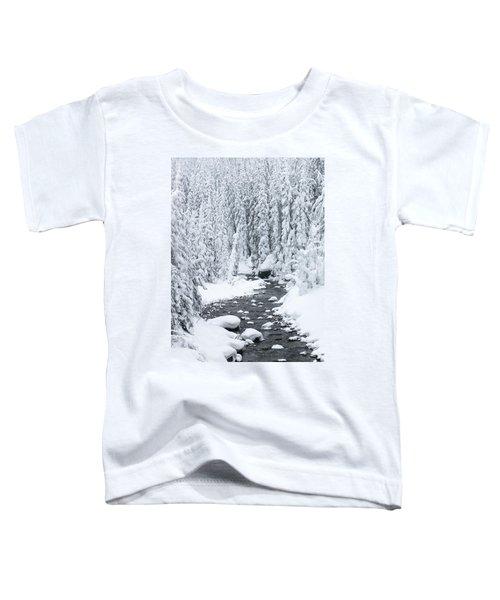Winter Creek Toddler T-Shirt