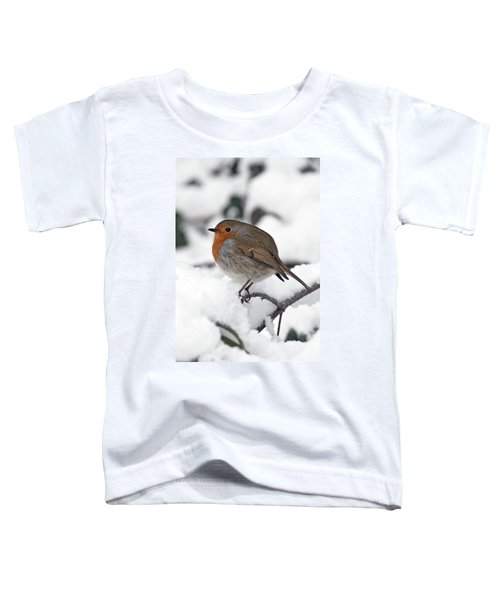Winter Robin Toddler T-Shirt