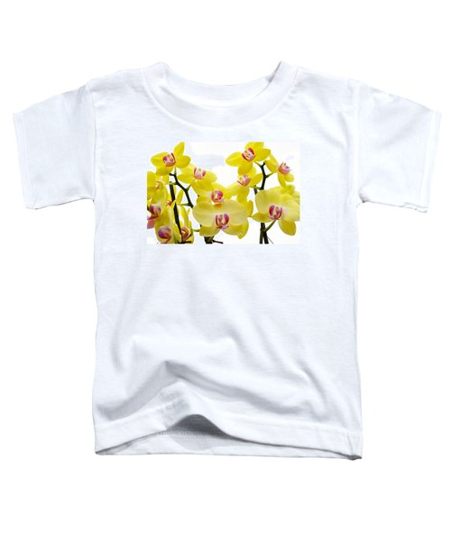 Yellow Beauties Toddler T-Shirt