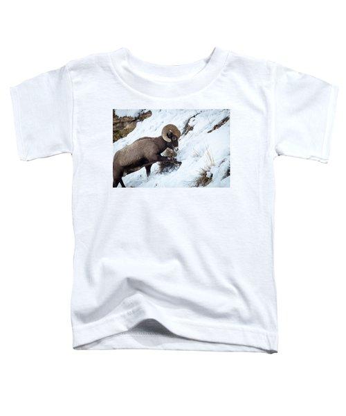 Yellowstone Bighorn Toddler T-Shirt