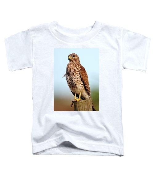 Portrait Of A Red Shouldered Hawk Toddler T-Shirt