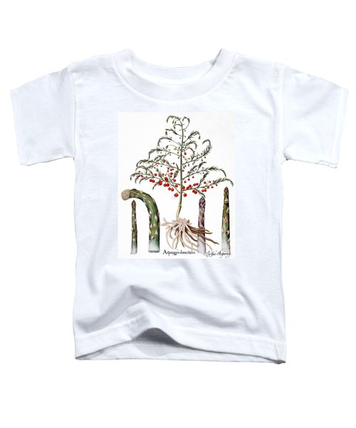 Botany: Asparagus, 1613 Toddler T-Shirt by Granger