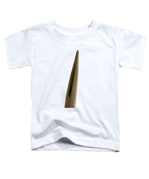 Rattlesnake Fang, Sem Toddler T-Shirt by Ted Kinsman