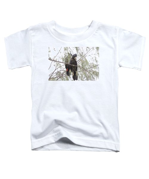 Red Tailed Black Cockatoos Toddler T-Shirt by Douglas Barnard