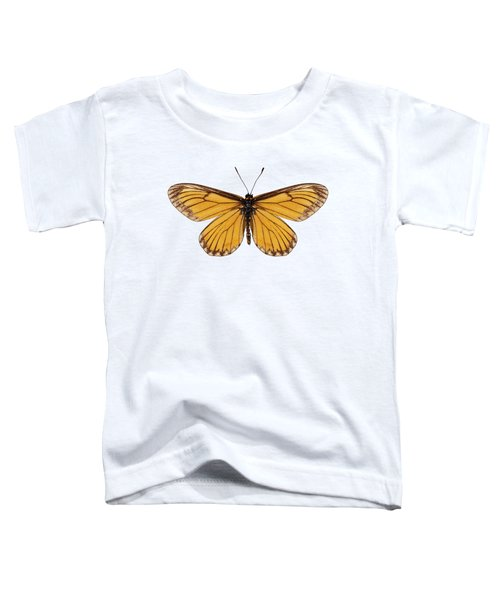 Butterfly Species Acraea Issoria  Toddler T-Shirt