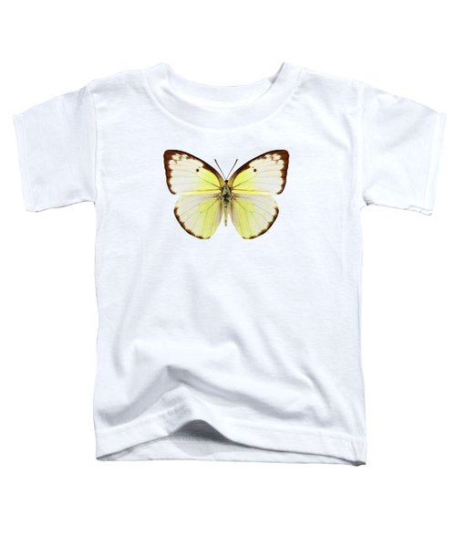 Butterfly Species Catopsilia Pomona  Toddler T-Shirt