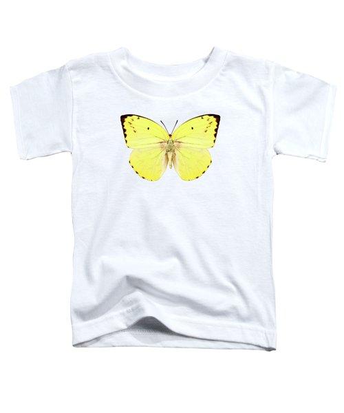 Butterfly Species Catopsilia Pomona Pomona  Toddler T-Shirt