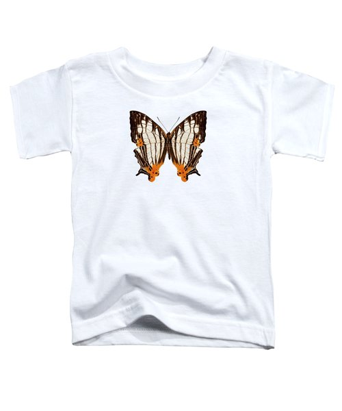 Butterfly Species Cyrestis Lutea Martini Toddler T-Shirt
