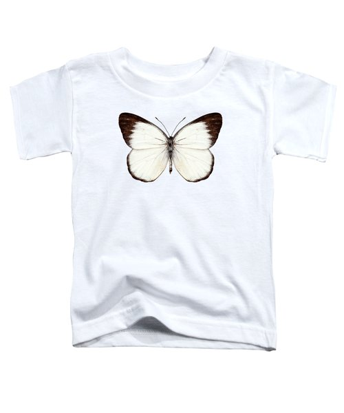 Butterfly Species Delias Belisama Toddler T-Shirt