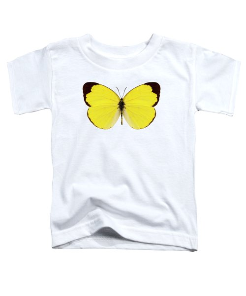 Butterfly Species Eurema Alitha  Toddler T-Shirt