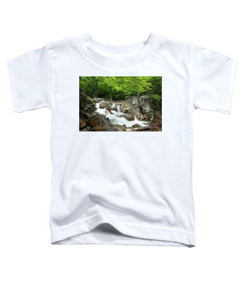 Ellis River Waterfall Toddler T-Shirt