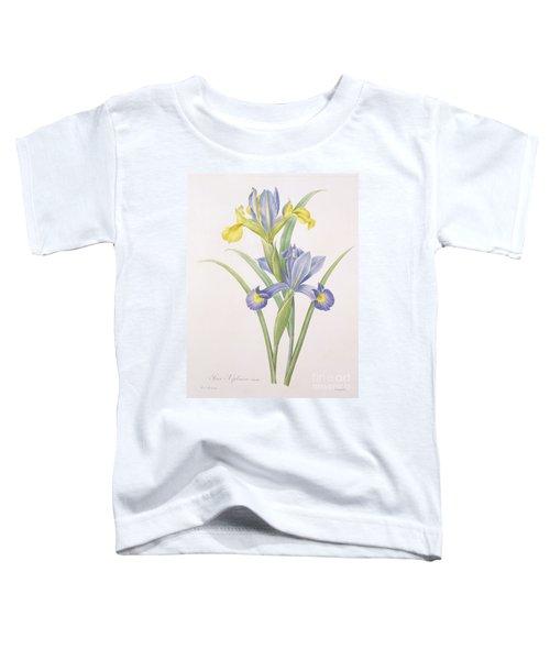 Iris Xiphium Toddler T-Shirt