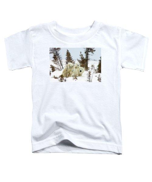 Polar Bear Ursus Maritimus Trio Toddler T-Shirt