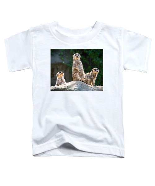 Three's Company Toddler T-Shirt by Jamie Pham