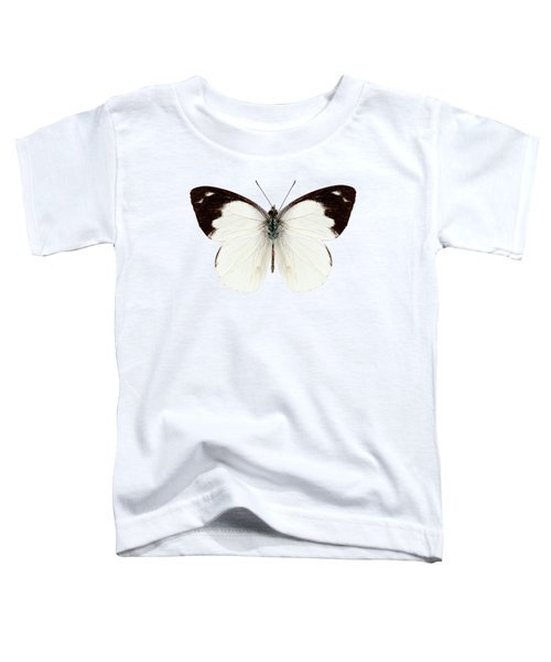 White Butterfly Species Apias Indra Indra Toddler T-Shirt