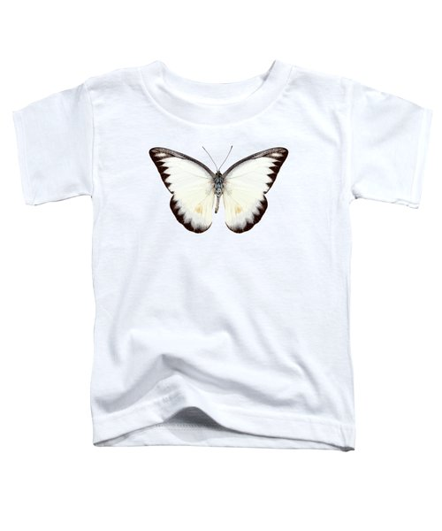White Butterfly Species Appias Lyncida Toddler T-Shirt
