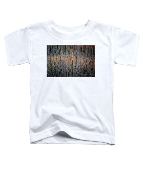 Touch Of Winter Toddler T-Shirt