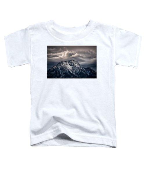 Winter Warning Toddler T-Shirt