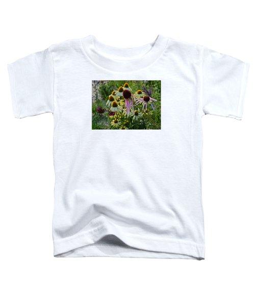 2015 Summer At The Garden Coneflowers Toddler T-Shirt