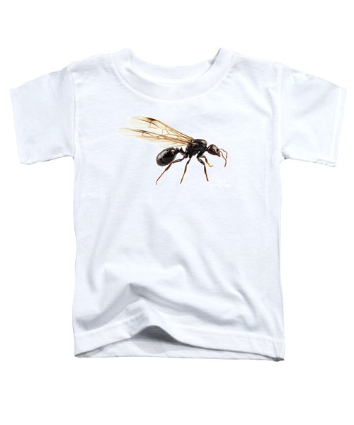Black Winged Garden Ant Species Niger Lasius Toddler T-Shirt