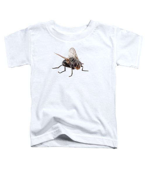 Blue Bottle Fly Species Calliphora Vomitoria Toddler T-Shirt