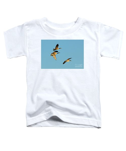 3 Geese In Flight Toddler T-Shirt