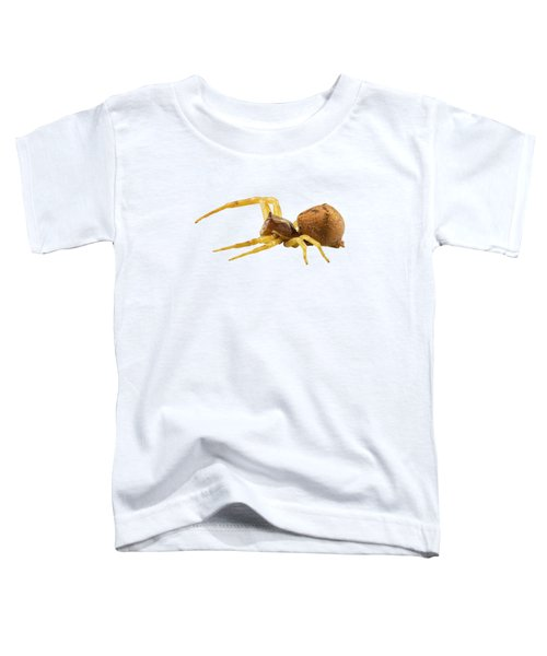 goldenrod crab spider species Misumena vatia Toddler T-Shirt