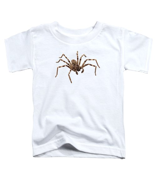 Wolf Spider Lycosa Sp Toddler T-Shirt