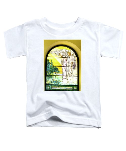 Saint Anne's Windows Toddler T-Shirt