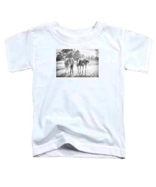 A Girl With Horses Toddler T-Shirt
