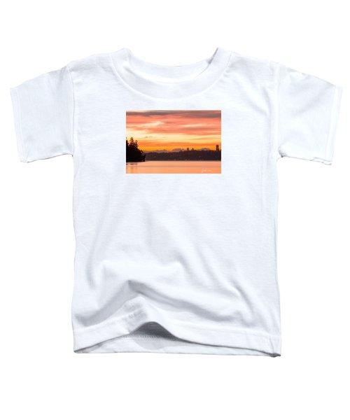 A Glaze Of Orange Toddler T-Shirt