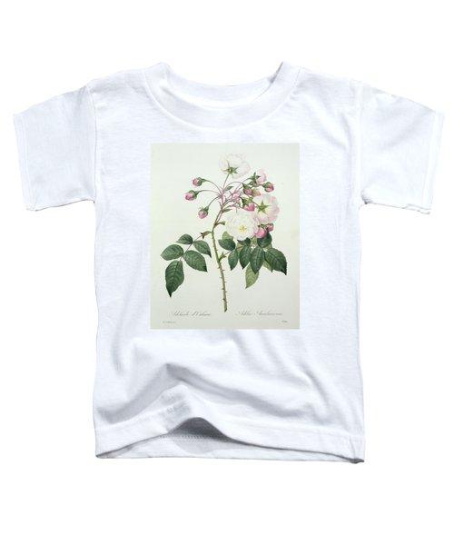 Adelia Aurelianensis Toddler T-Shirt