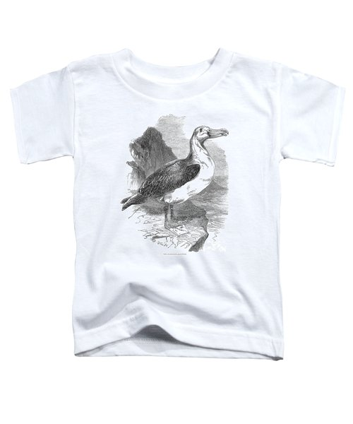 Albatross Toddler T-Shirt by Granger