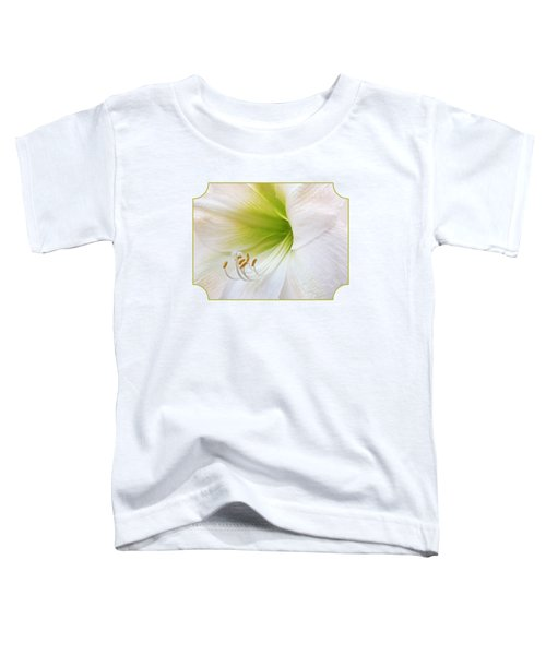 Alluring Amaryllis Toddler T-Shirt by Gill Billington