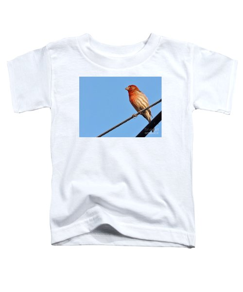 American Crossbill On Wire     Spring   Indiana   Toddler T-Shirt by Rory Cubel
