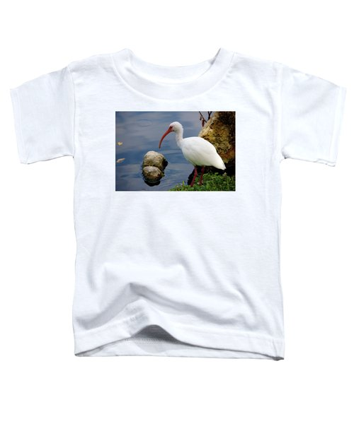 American White Ibis Toddler T-Shirt