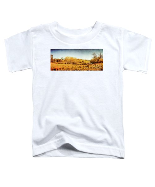 Antique Weathered Countryside Toddler T-Shirt