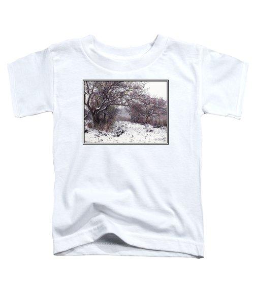Apples Of The Asquamchumaukee Toddler T-Shirt