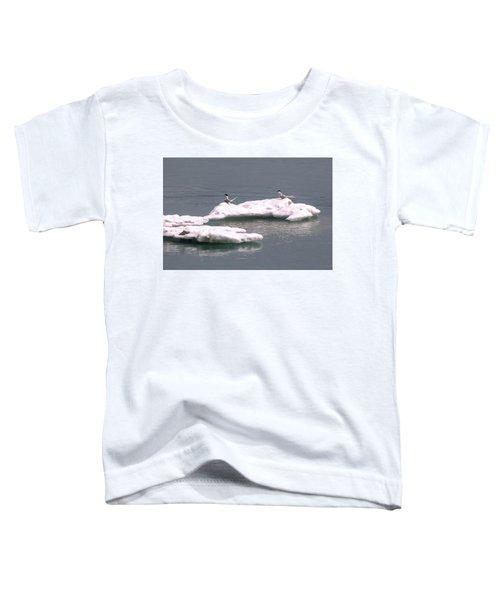Arctic Terns On A Bergy Bit Toddler T-Shirt