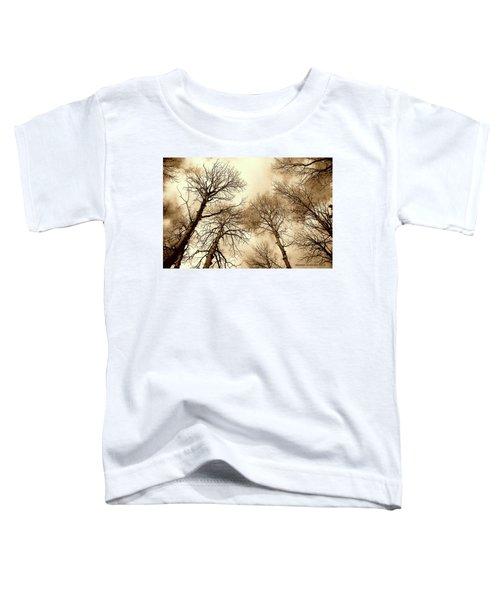 Aspen Toddler T-Shirt