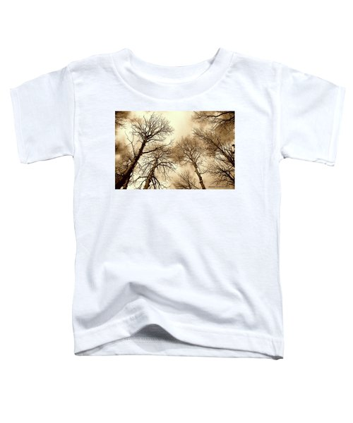 Aspen Toddler T-Shirt
