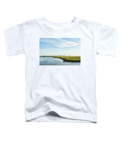 Assateague Island Toddler T-Shirt