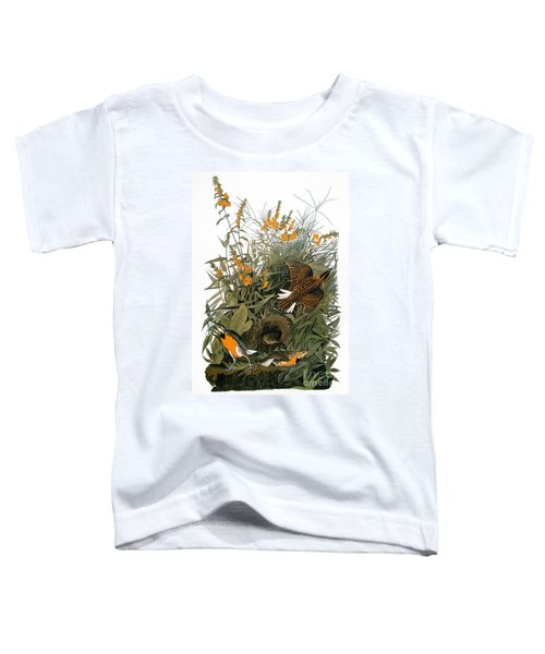 Audubon: Meadowlark Toddler T-Shirt by Granger