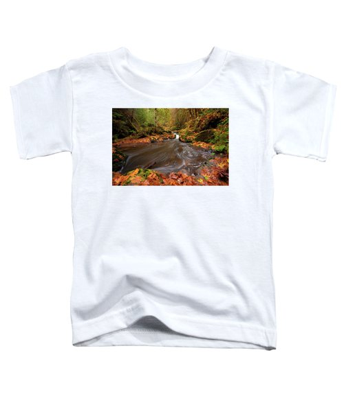 Autumn Flow Toddler T-Shirt