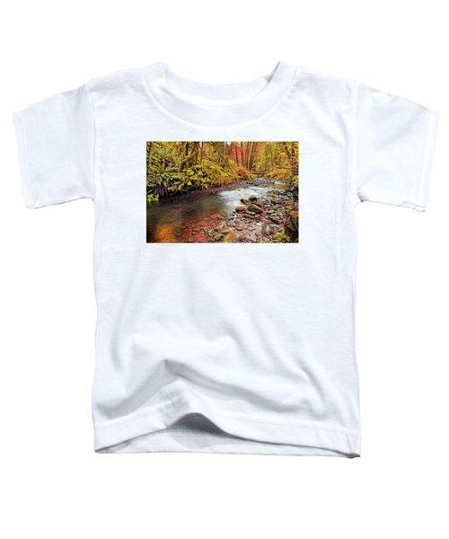 Autumn Sunrise In An Oregon Rain Forest  Toddler T-Shirt