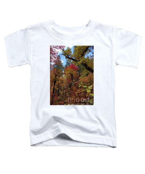 Autumn In Sedona Toddler T-Shirt