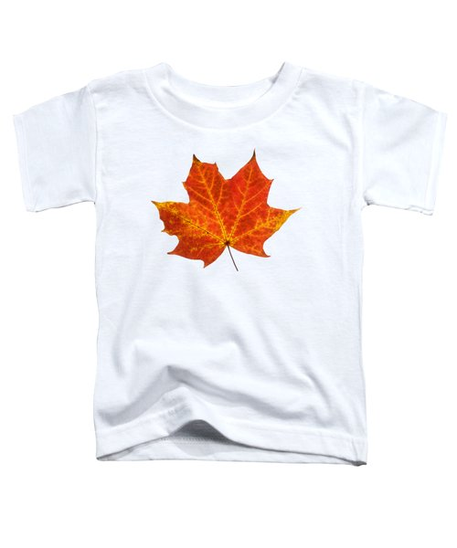 Autumn Leaf 3 Toddler T-Shirt