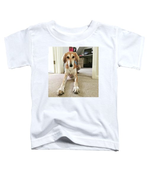 Ava On Her First Birthday #saluki Toddler T-Shirt