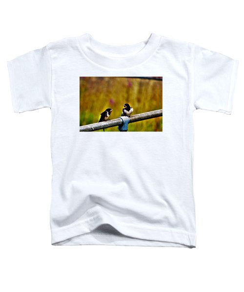 Baby Swallows Toddler T-Shirt